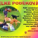 podekovani-kobzova11